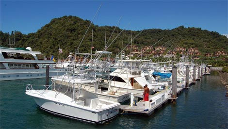 Paphos marina to have cruise ship facilities?