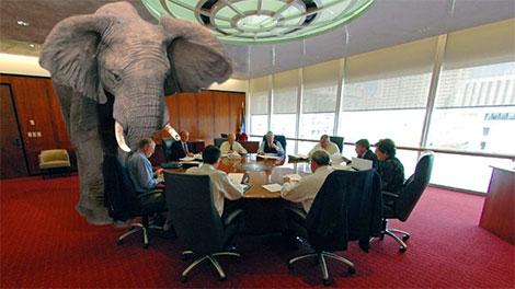 Troikans bump into elephant